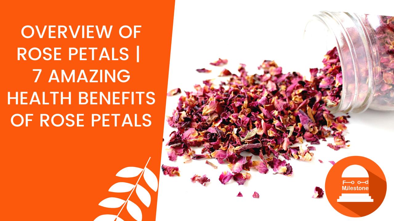 Overview of Rose Petals | 7 Amazing Health Benefits of Rose Petals